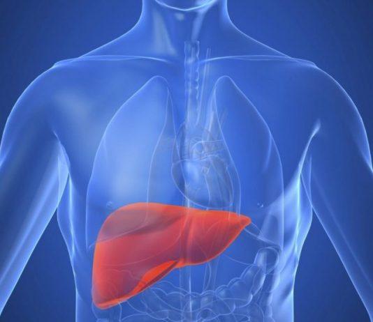 fegato-epatologia